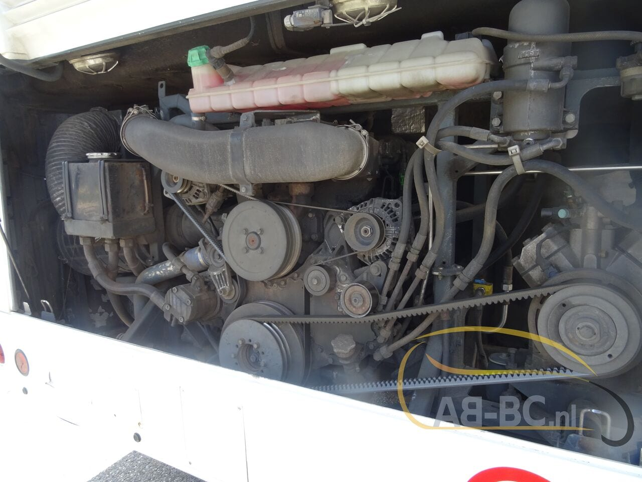 coach-busTEMSA-Safari-RD-DAF-Motor-53-Seats-Euro-5---1623932690001475199_big_3c044a6ce52a0e189b515b5a0a95386a--21061715155620919600